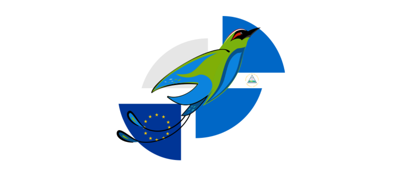 SOS Nicaragua Europa